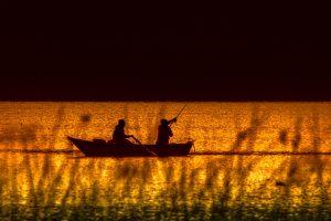 ishing-boat-fish-sea